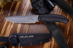 Mr. Blade Orca