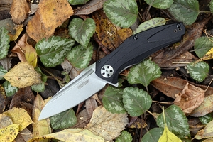 Kershaw 7007 Natrix