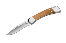 Buck 110 Folding Hunter S30V